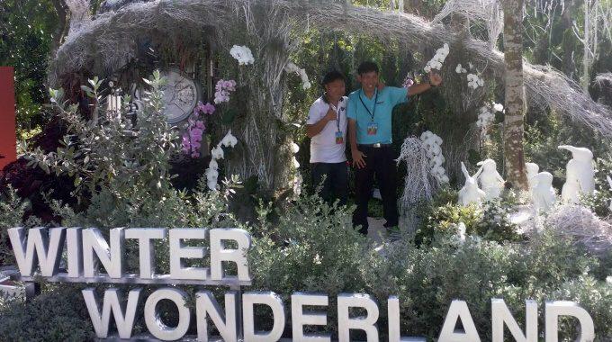 """Winter Wonderland"" At The Singapore Garden Festival 2016"
